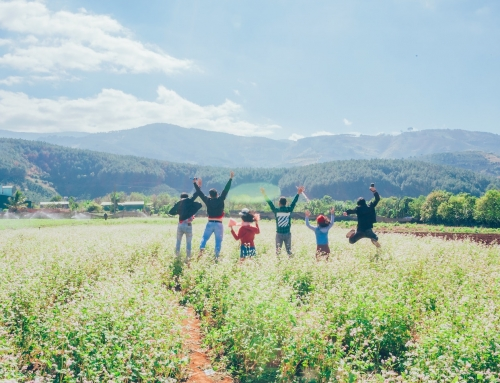 Group Vacation: Tips for a Successful Trip